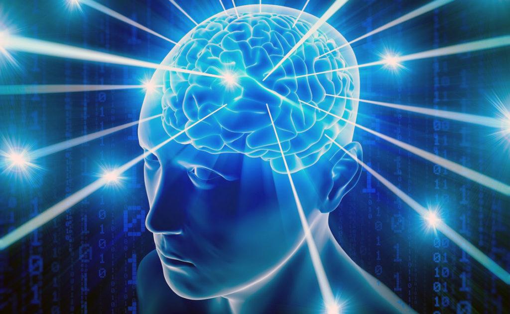 Викиум, Wikium, тренажеры для мозга