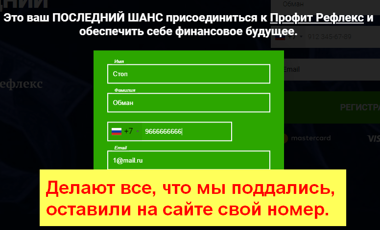 Профит Рефлекс, Дмитрий Логиновский